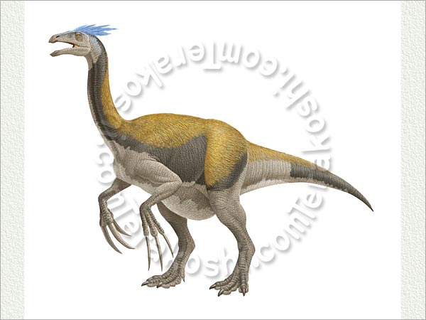 Therizinosaurus Related Keywords & Suggestions ...