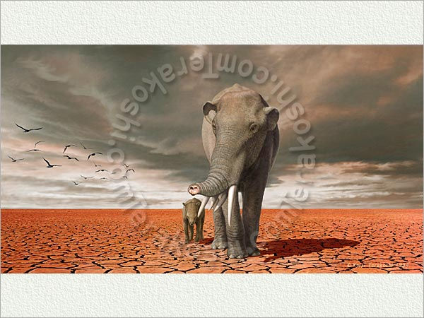 Gomphotherium Elephants Related Keywords & Suggestions - Gomphotherium ...